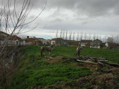 Solicitan ayuda para limpiar la ruta jacobea en Palencia