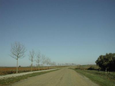 El Ayuntamiento de Palencia organiza 'Andando por el Camino de Santiago'