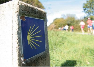 Novecientos atletas correrán el Medio Maratón Roncesvalles-Zubiri